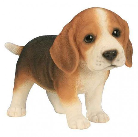 Beagle bébé 23CM