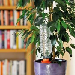 Absentez-vous sans vous soucier de l'arrosage de vos plantes d'intérieures. Le goutte à goutte Aquasolo en céramique s'adaptent à toutes les bouteilles. Facile d'utilisation, il permet un arrosage simple et de différentes durées selon les bouteilles utilisées.