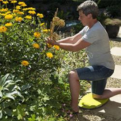Retrouvez tous les accessoires utiles et pratiques pour le jardinage, que ce soit pour le potager ou le jardin d'ornement. Découvrez notre sélection de paniers de récolte, coupe-tout, sécateurs, ou encore lève bêche.
