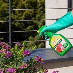 Retrouvez notre sélection de désherbant prêt à l'emploi, pour éliminer les mauvaises herbes du jardin : désherbantpolyvalent, pour cours,allées et terrasses.